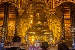 Buda dorado (rraass70) Tags: canon d700 monumentos estatuas ninbinh deltadelriorojo vietnam