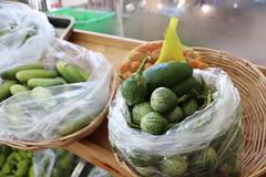 Cambodia-dawson-02 (318) (Horticulture Innovation Lab) Tags: cambodia ucdavis royaluniversityofagriculture phnompenh photobybrendadawson remic market eggplant