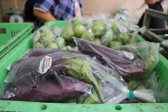 Cambodia-dawson-02 (547) (Horticulture Innovation Lab) Tags: cambodia ucdavis royaluniversityofagriculture phnompenh photobybrendadawson remic packing eggplant