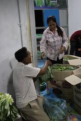 Cambodia-dawson-01 (319) (Horticulture Innovation Lab) Tags: cambodia photobybrendadawson royaluniversityofagriculture ucdavis legrand packinghouse postharvest sorting