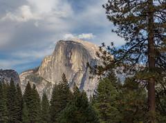 Half Dome (Lisa Roeder) Tags: yosemite nature