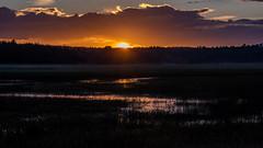 Goodnight Arizona (M@ H) Tags: sunset flagstaff arizona water grass wetland river stream suncrest landscape nature clouds glow handheld