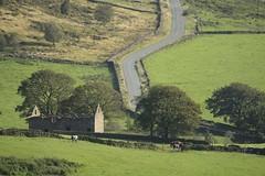 GradbachRd (Tony Tooth) Tags: nikon d600 tamron 500mm mirror reflex catadioptric derelict barn road moors moorland gradbach staffs staffordshire england countryside rural