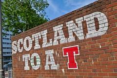 Scotland to a T, Glasgow, UK (Robby Virus) Tags: glasgow scotland uk unitedkingdom gb greatbritain wellpark brewery beer brewing street art brick wall lager smug graffiti mural artist tennents