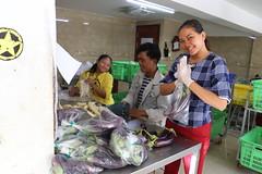 Cambodia-dawson-02 (464) (Horticulture Innovation Lab) Tags: cambodia ucdavis royaluniversityofagriculture phnompenh photobybrendadawson remic packing