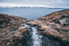Islanda Ski