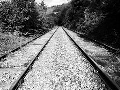 Old Rail Tracks (Hammerhead27) Tags: old blackandwhite nature overgrown monochrome southwales wales mono track industrial view neglected perspective rail railway olympus line sleeper ballast unused light shadow