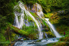 Panther Creek Falls - Washington - USA (~ Floydian ~) Tags: henkmeijer photography floydian panthercreekfalls washingtonstate waterfall waterfalls forest american leefilters landscapes landscape leelittlestopper canon canon5dmarkiv
