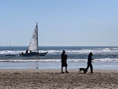 Sailing close to the shore (markshephard800) Tags: dog vagues waves people northumberland alnmouth northsea sable sand water mer sea seascape yacht