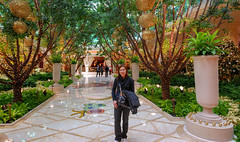 40325-Las-Vegas (xiquinhosilva) Tags: 2010 encore lasvegas nevada usa wynn unitedstates