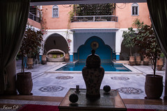 A mid-week retreat HWW (Irina1010) Tags: riad riadanika marrakesh morocco interior garden pool patio chairs windows beautiful canon balcony planters