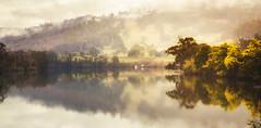 0S1A5151 (Steve Daggar) Tags: tasmania australia landscape landscapephotography huon hobart reflection reflections mist fog