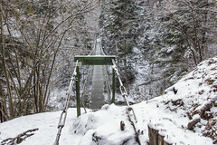 Don't be afraid (mystero233) Tags: fear afraid donot cross thebridge bridge steel girder slovakparadise slovenskyraj slovakia slovensko nationalpark np nature winter snow forest outdoor landscape hike alone loneliness