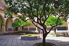 2019-06-04 Portugalia - Tomar (32) (aknad0) Tags: portugalia tomar architektura zamki dziedziniec drzewo