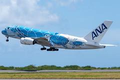 ANA Airbus A380-841; JA381A@HNL;10.09.2019 (Aero Icarus) Tags: honoluluinternationalairport hnl hawaii oahu plane avion aircraft flugzeug ana airbusa380 ja381a takeoff