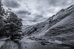 Deep in Dovedale (Through_Urizen) Tags: category derbyshire dovedale england landscape places canon canon1585mm canon70d outdoor outside rural countryside nature natural landscapephotography hills trees river stream slopes clouds darkclouds dog walkers tint tone monochrome mono uk unitedkingdom greatbritain