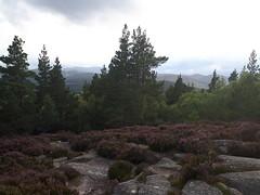 Photo of Craigendarroch Hill