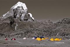 Base Camp (The Two Doctors) Tags: himalaya blackandwhite blackwhite monochrome basecamp mountaineering mountains nepal