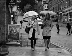 Today's Plan - Rain. Sept 2019 (Simon W. Photography) Tags: rain wet weather umbrella street candid people streetphotography streetphoto streetphotographer photography streetstyle urban path person mature groupshot crowd sonyrx10iv sonyrx10m4 sonyuk sony sonydscrx10m4 blackandwhite blackwhite monochrome monotone greyscale grayscale bw bnw nocolour nocolor lightandshadow