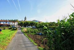 Aprovechando este día de sol en Hondarribia (eitb.eus) Tags: eitbcom 16599 g1 tiemponaturaleza tiempon2019 gipuzkoa hondarribia josemariavega