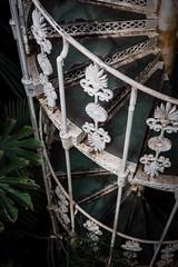 (Coral G. Granda) Tags: londres kewgardens london botanical botanic botanico jardin jardinbotanico royalgardens green verde nature stairs escaleras vitnage