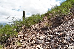 20190910 William R. Gleason stone quarry Road (1880 - 1885) on Sentinel Peak (lasertrimman) Tags: william r gleason 1880 20190910 stone peak quarry sentinel 1885 stonequarry sentinelpeak 18801885 williamrgleason road