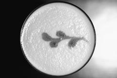 Velvet Sour (Thomas Hawk) Tags: america bardo bardoloungeandsupperclub bayarea california eastbay lakeshore oakland us usa unitedstates unitedstatesofamerica velvetsour westcoast bw cocktail restaurant fav10