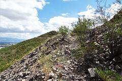 20190910 William R. Gleason stone quarry Road (1880 - 1885) on Sentinel Peak (lasertrimman) Tags: stone peak william r gleason quarry sentinel 1880 1885 20190910 stonequarry sentinelpeak 18801885 williamrgleason road