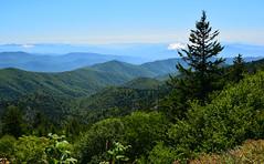 Smoky Mountains near Clingmans Dome (pjjoet) Tags: tennessee pigeonforge smokymountains clingmansdome smokymountainsnationalpark greatsmokymountainsnationalpark
