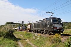 DB Cargo 193 702-8 KLV, Heidelsheim (michaelgoll777) Tags: db br193 vectron mrce