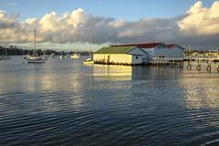 Fresh Water Bay_Boat Shead_DSC3643