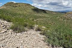 20190910 William R. Gleason stone quarry (1880 - 1885) on Sentinel Peak (lasertrimman) Tags: 20190910 william r gleason 1880 1885 stone quarry sentinel peak williamrgleason 18801885 stonequarry sentinelpeak