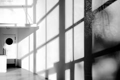 documenta Halle Kassel I (KnutAusKassel) Tags: bw fineart art blackandwhite blackwhite nb noirblanc monochrome black white schwarz weiss blanc noire blanco negro schwarzweiss grey gray grau einfarbig architektur architecture building gebäude documentahalle kassel spiegelung licht schatten