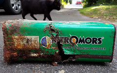 Rust Rot (Mandy Willard) Tags: 365 2508 tin cat car