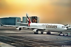EMIRATES A340 A6-ERP (Adrian.Kissane) Tags: airline airliner jet plane airbus aircraft aeroplane uae airport ramp sky outdoors 1412009 185 a340 a6erp dubai emirates