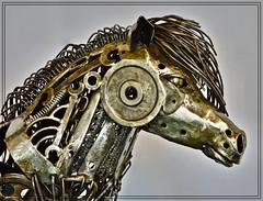 Getting ahead! (john.methven) Tags: horse equine sculpture art dundee