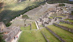Machu Picchu IV, PERÚ (castillerozaldívar) Tags: bridgepreferenceslabelpurpleto do manuelzaldivar castillerozaldivar perú machupicchu vallesagrado ruinas maravilla wondersoftheworld new7wondersoftheworld 7maravillasdelmundo maravillasdelmundo