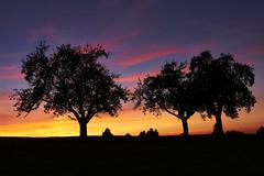 _DSC4970 (christian.joehl) Tags: sonnenuntergang sunset blauestunde abend schweiz christianjoehl