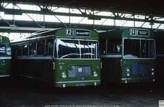 Bristol Omnibus RELL6Ls MH1260 and MH1157, Marlborough Street, Bristol, June 10th 1984 b (Bristol RE) Tags: bristolomnibus bristol countrybus bristolre rell rell6l ecw marlboroughstreetbusstation cumberlandmotorservices cumberland 295 1262 mh1262 dao295k 1157 c1157 mh1157 wae790h