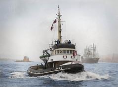 The port of Hamburg tug Karl (1950s) (frankmh) Tags: tug portofhamburg germany 1950s colorization