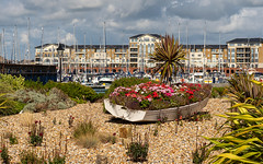 Sovereign Harbour (Mandy Willard) Tags: 365 0209 sovereignharbour boats flowers pebbles