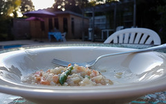 Nearly Gone (Mandy Willard) Tags: 365 2908 dinner risotto salmon beans bowl fork
