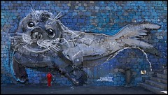 Madeira - Câmara de Lobos (abudulla.saheem) Tags: lobomarinho furseal robbe bybordaloii art streetart urbanart ruanovadapraia câmaradelobos regiãoautónomadamadeira madère portugal panasonic lumix dmctz101 abudullasaheem