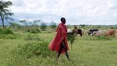 IMGP2923 Shepherd (Claudio e Lucia Images around the world) Tags: moroto uganda young shepherd karamoja people tribe faces portrait country pentax pentaxlens pentaxcamera pentaxart nationalgeographic africageographic localpopulation tribesofuganda pentaxkp pentax18135