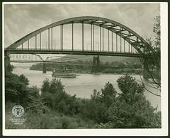 Fort Henry Bridge Construction (Ohio County Public Library) Tags: wheelingwv wheeling forthenrybridge fthenrybridge construction bridgeconstruction ohioriver avalon riverboat sternwheel suspensionbridge steelbridge