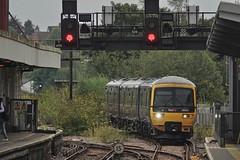 Losing Impetus (Deepgreen2009) Tags: redhill station buddleia arrival reading 166201 railway train transport platformzero gwr fgw turbo