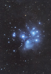 The Pleiades (AstroBackyard) Tags: pleiades astrophotography photography stars night m45 messier 45 star cluster taurus deep sky astronomy space telescope dslr canon xsi 450d
