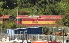 60029 Toton (localet63) Tags: ews class60 60029 totonyard