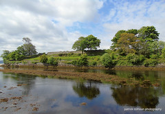 old orchard (patrickcolhoun) Tags: orchard cranariver buncrana donegal ireland landscape river countydonegal trees nature