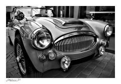 Austin-Healey 3000 Mk III (stephane_p) Tags: austinhealey sigma1835 automobile bighealey car roadster sportscar voiture noiretblanc blackandwhite nb bw monochrome noirblanc blackwhite pentax austin